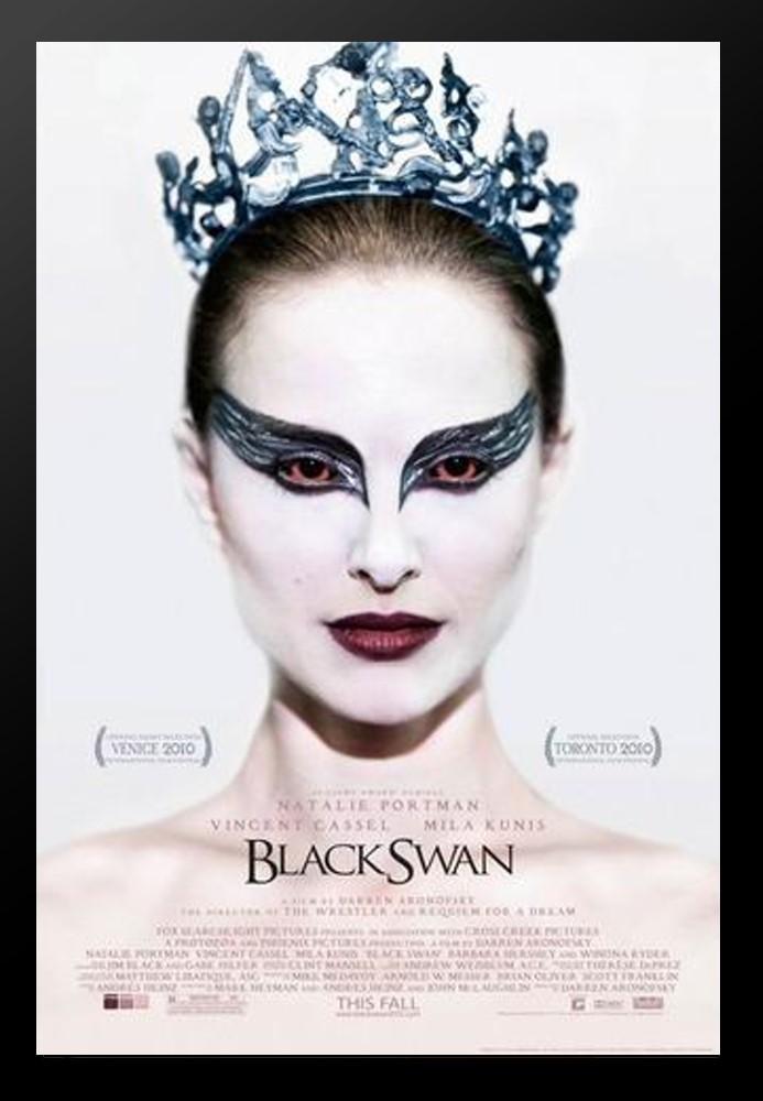 black_swan_large_b5fba1de-a604-4ad8-8eac-029925389fc7_776x